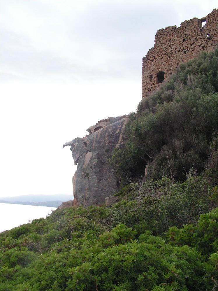 torre-genov-alla-baia-di-tiuccia1piccola.JPG